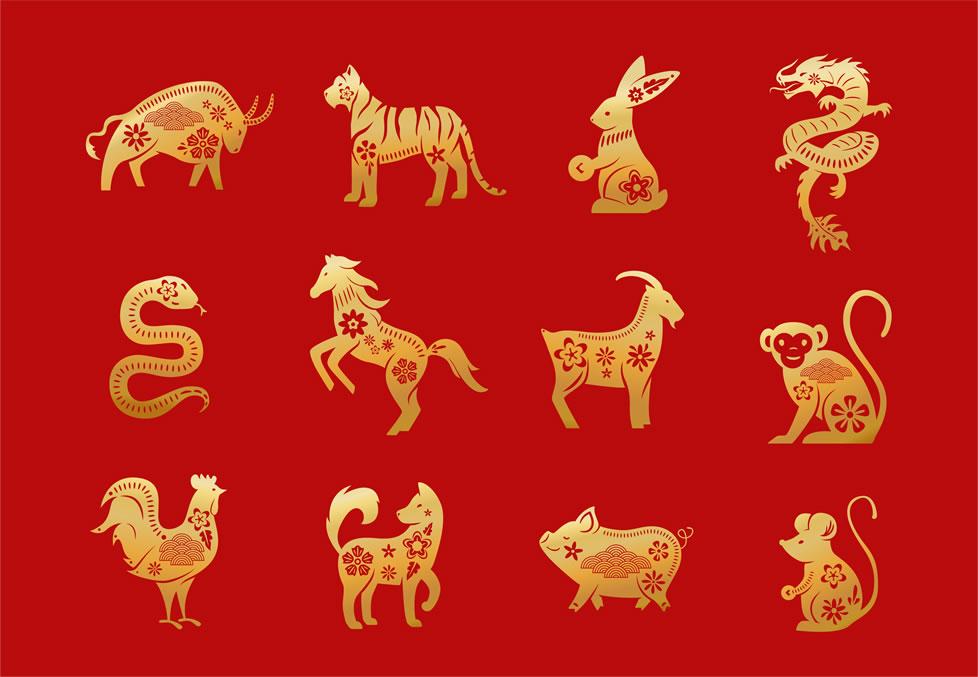 Los Signos Chinos